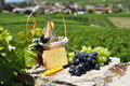 Wine and grapes chateau de aigle switzerland Stock Photo