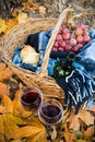 Wine, grapes and glasses Royalty Free Stock Photo