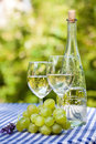 Wine and grapes glasses a bottle fresh green Stock Image