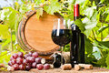 Wine grapes and grapevine composition glass of red bottle barrel on the background of grape leaves Stock Images
