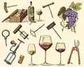 Wine harvest products, press, grapes, vineyards corkscrews glasses bottles for menus and signage in the bar. engraved Royalty Free Stock Photo