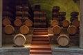 Wine Oak Barrels Mendoza Argentina Stock Image