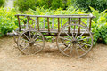Wine old wood horses cart in grape field Royalty Free Stock Photo