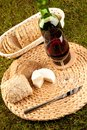Wine picnic on grass Royalty Free Stock Photography