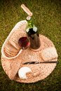 Wine picnic on grass Royalty Free Stock Photos