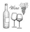 Wine set. Wine glass, bottle, grape branch, handwritten lettering Royalty Free Stock Photo