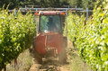 Wine spray small tractor spraying pesticides on a early summer crop of grapes Stock Photography