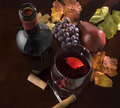 Wine still life, autumn Royalty Free Stock Image