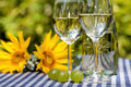 Wine and sunflowers glasses in the background Royalty Free Stock Photography