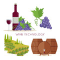 Wine Technology. Bottle of Vine, Beaker, Vineyard Royalty Free Stock Photo