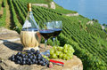 Wine terrace vineyard lavaux region switzerland Stock Photo