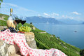 Wine terrace vineyard lavaux region switzerland Royalty Free Stock Image
