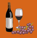 Wine vector illustration of and grape Stock Images