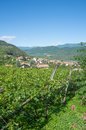 Wine village of tramin south tyrolean wine route italy the popular well known near merano home gewurztraminer tyrol Stock Photos