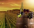 Wine with vineyard on background red wooden keg Stock Image