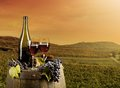 Wine with vineyard on background red wooden keg Royalty Free Stock Photos
