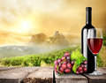 Wine and vineyard red on the table on a background of Royalty Free Stock Photos