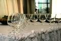 Wineglass Royalty Free Stock Photo