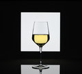 Wineglass  on blurred black and white background Royalty Free Stock Photo