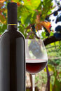 Wineglass and bottle of red wine Royalty Free Stock Photos