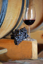 Wineglass and grapes on a barrel Stock Photos