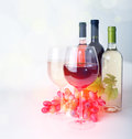 Wineglass wine and grapes bottles of Stock Photo