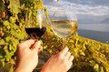 Wineglasses against vineyards in lavaux region two hands holding switzerland Stock Image