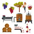 Winemaking process illustrated from grapes growing till wine bottling