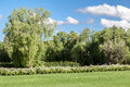 Winery garden mendoza argentina trees in a of a in Stock Photography