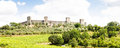 Wineyard in tuscany monteriggioni region italy front of the ancient medieval walls Stock Image
