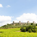 Wineyard in tuscany monteriggioni region italy front of the ancient medieval walls Stock Photos