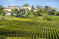 Wineyards Of Saint Emilion, Bo...