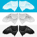 Wing. Vector illustration Royalty Free Stock Images