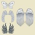 Wings animal feather pinion bird freedom flight natural peace design vector illustration.