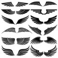 Wings. Elements for design. Stock Photo