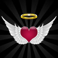 Wings of love Royalty Free Stock Photos