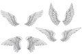 Wings set Royalty Free Stock Photo