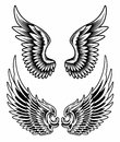 Wings set vector fully illustration of on isolated white background image suitable for design elements emblem insignia coat of Royalty Free Stock Image