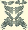 Wings tribal set the vector image Stock Photography