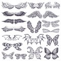 Wings vector flying winged angel with wing-case of bird and butterfly with wingspan illustration black wing-beat tattoo