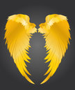 Wings. Vector illustration on dark background. Golden metal Royalty Free Stock Photo