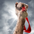 Winner hand holding a s medal success in competitions Royalty Free Stock Photography