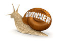 Winner snail clipping path included image with Royalty Free Stock Photography