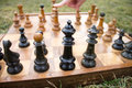 The winning chess move a hand pointing at board is on grass Royalty Free Stock Images