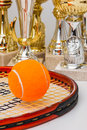 Winning tennis tournaments victory in the championship Royalty Free Stock Photography