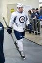 Winnipeg Jets Royalty Free Stock Photo