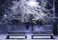 Winter alley at night Royalty Free Stock Photo