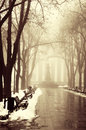 Winter alley in Odessa, Ukraine. Royalty Free Stock Images