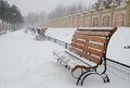 Winter atmosphere in a park bucharest romania Stock Photography