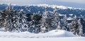 Winter austrian alps panorama with mountain peaks, snow and trees Royalty Free Stock Photo